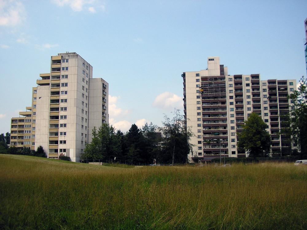 Kornfeld auf Brachfläche