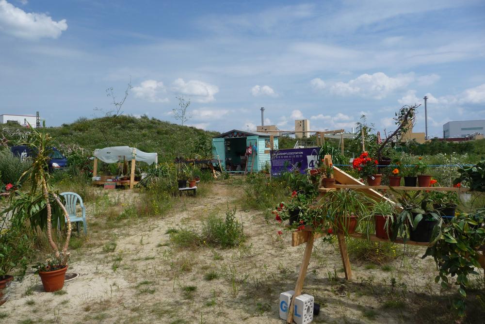 Pflanzenpflegestation Hemelingen